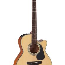 Takamine G Series GN10CE-NS