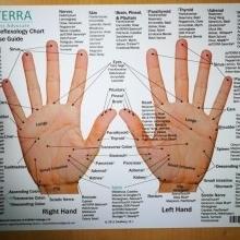 Tableau de réflexologie des pieds et des mains (anglais)